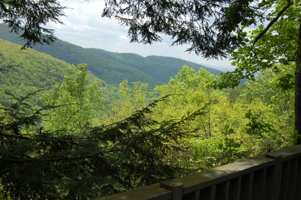 Blood Mountain Cabins in Blue Ridge Mountains Georgia, Georgia